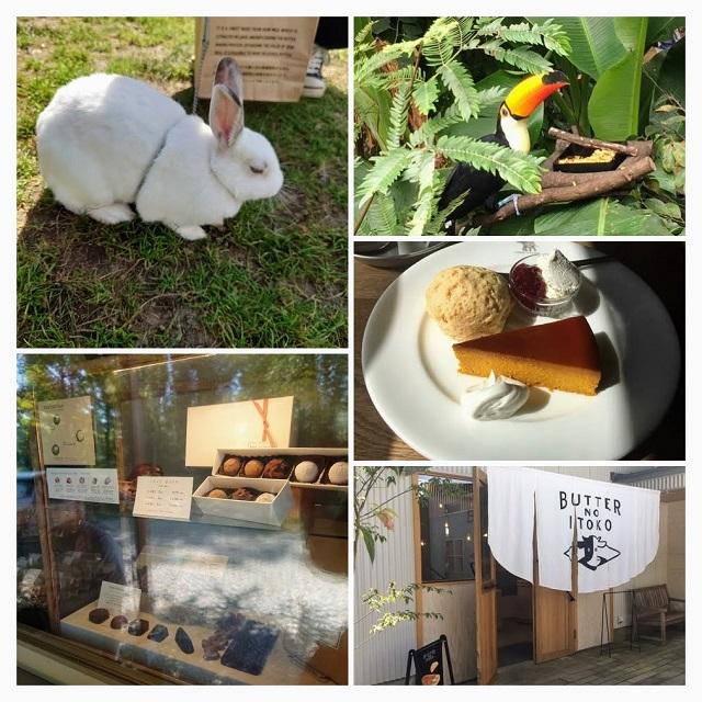 那須の観光地写真